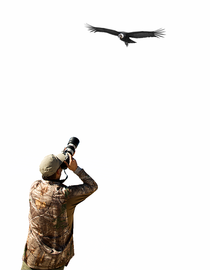 Fotógrafo en acción